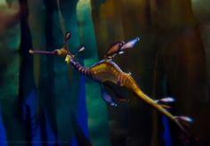 Sea Dragon by ~LASKANWLF on deviantART
