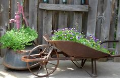 """Marie's raised bed veg and sunflower garden, all from self seeders and volunteers! """"My wheelbarrow full of happy Johnny Jump ups self seeded from last year""""  See her secrets..."""