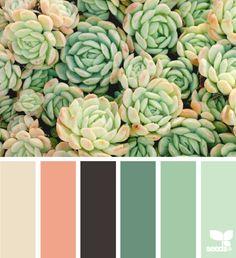 tan coral mint green black