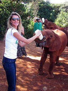 Bottle feed a baby elephant.