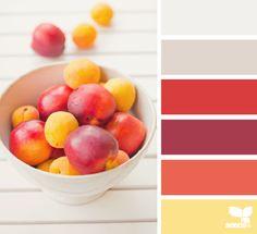 fresh picked hues