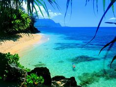 Dream Vacation Spot: Hawaii