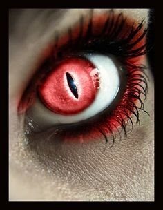 eye contacts red cat eye eye makeup macro photography makeup ideas    Red Cat Eye Contacts