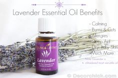 Lavender Essential Oil Uses and Benefits | www.decorchick.com