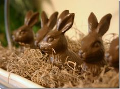 Cute idea for decorating with faux chocolate bunnies from Mud Pie Studio