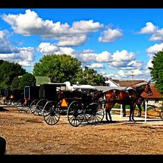 #Amish Country #Ohio
