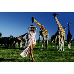 Julie Foster with giraffes