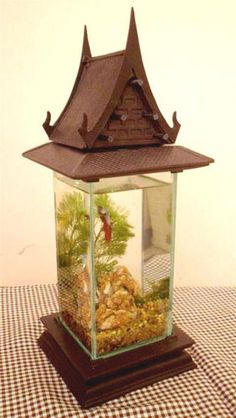 Siam Betta Tank. This is awesome!.
