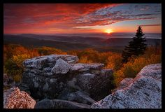 A captivatingly crimson, deeply gorgeous sunset over Bear Rocks, Dolly Sods Wilderness, West Virginia. #sunset #autumn #fall #nature #landscape #Virginia #America #beautiful #photography