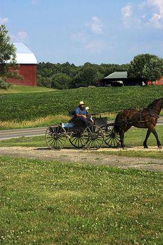 Amish Cart, Ohio