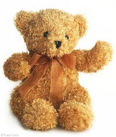 I loved my teddy bears