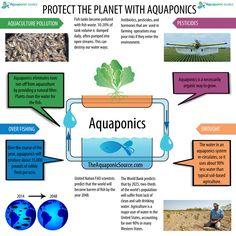 Protect the planet with Aquaponics!   TheAquaponicSource.com
