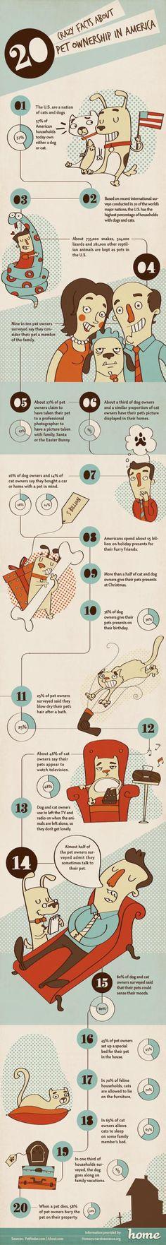 20 curiosidades sobre propietarios de mascotas en América