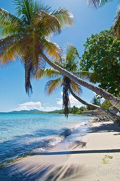 Esperanza, Vieques Island, Puerto Rico