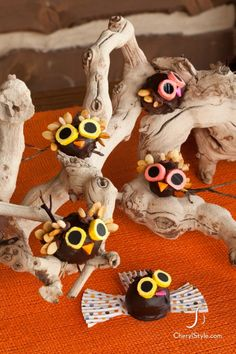 how to make owl cake pops for #fall or #halloween