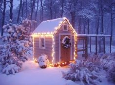 the magic of lights and snow