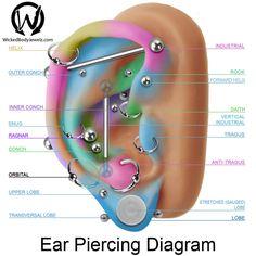 tragus, antitragus, conch, inner, upper, outer, daith, forward, helix, industrial, lobe, orbital, ragnar, rook, snug, stretched, transversal, vertical