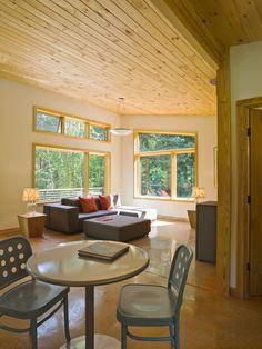 Modern Cabin living