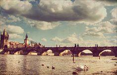 destinations, favorit place, charl bridg, travel destin, czech republic, stones, bridges, prague, the civil wars