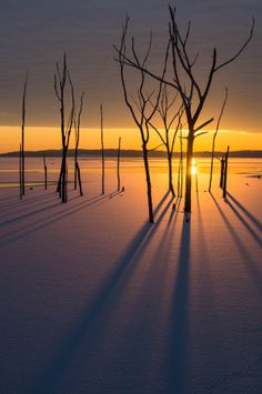 RP  > Sun rising over a frozen lake at Manasquan Reservoir in New Jersey, USA, photo by Dave Rogers