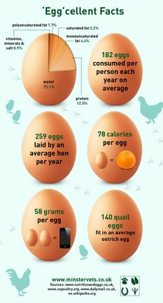 Egg Infographic: Get better health at: http://www.greenthickies.com