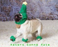 haters gonna hate... hahaha!