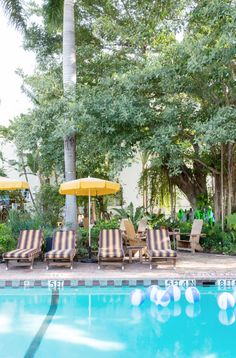 Why not lounge by the pool at the Freehand Miami hostel? You are in #Florida, after all.