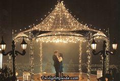 Show me your Gazebo Decorations! :  wedding gazebo decorations ceremony decorations Twilight Gazebo