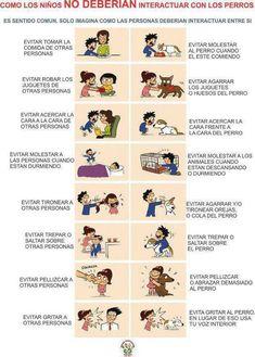 ¿Cómo los niños no deberían interactuar con los perros?