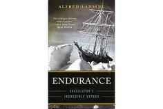 The Endurance: Shackleton's Incredible Voyage