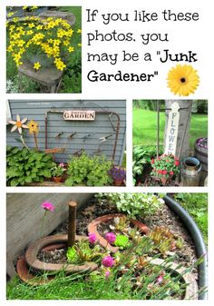 """If you like these photos, you may be a """"Junk Gardener"""" - I confess: I do like these photos and I am a junk gardener. :)"""