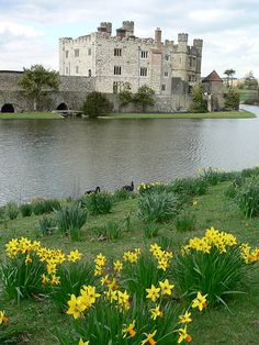 Leeds Castle is a castle in Kent, England, situated 5 miles southeast of Maidstone. A castle has been situated on the site since 1119.