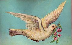 *The Graphics Fairy LLC*: Free Vintage Graphic - Beautiful Dove