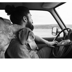 this man, charles bukowski, man dog, beard, ador, puppi, man's dog, man's best friend, angels