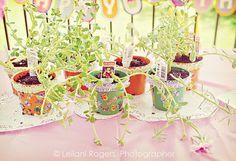 fancy nancy explorer extraordinaire: planting/decorating flower pots
