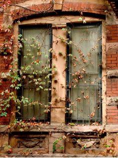 Love, love, love this window