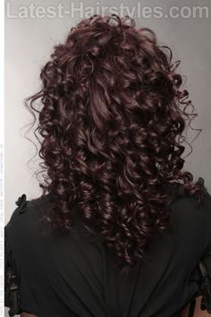 Long Naturally Curly Hairstyle With a Twist Back View