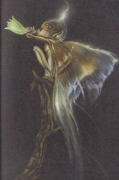 trumpet blower Fairy Fea Fee Fae