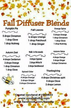 Essential Oils - Diffuser Blends