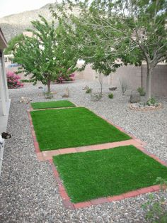 Our poor grassless yard on pinterest xeriscaping for Xeriscaped backyard design
