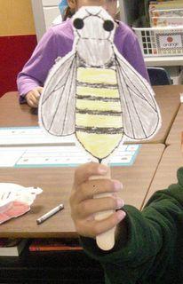 pollination lesson
