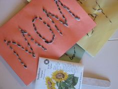 Homemade seed greeting cards