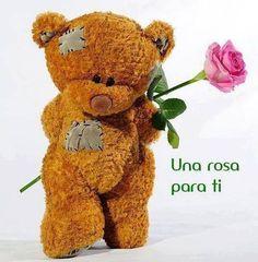 Una rosa para ti en San Valentín
