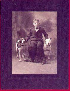 Vintage Pit Bull