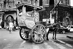 Kalesa... my favorite mode of transportation  :  )