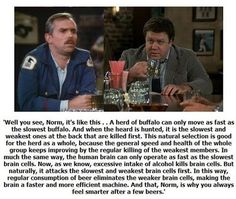 Cliff's Genius Theory On Beer