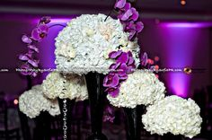 glamorous, centerpiece, purple orchid, white rose, and white hydrangea