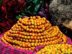 tradicion guatemala, mi guatemala, nuestra tradicion, mi bella, antiguaattitlantikalgu, beauti guatemala, bella guatemala