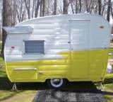 Yellow Shasta Compact