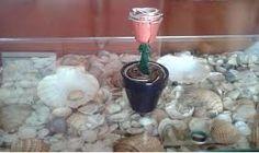 #roses #nespresso #capsules #handmade #handcraft #flowers #rosas #flores #duraderas #capsulas